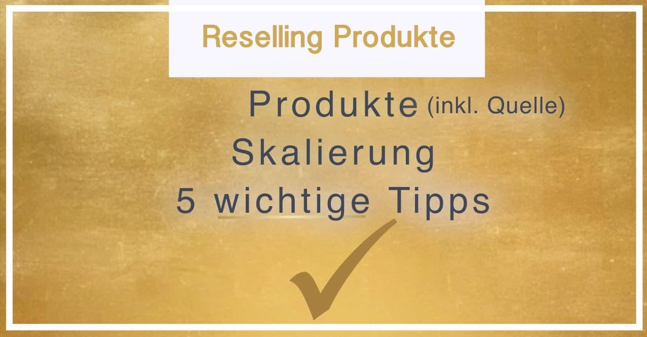 Reselling Produkte ebay Reseller